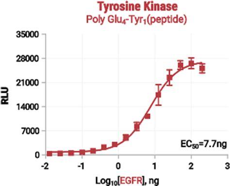 Enzyme Assay Protocol - utoledoedu